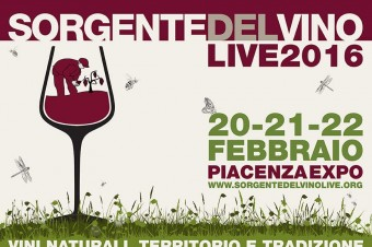Sorgentedelvino LIVE 2016 – Natural wine, terroir and tradition